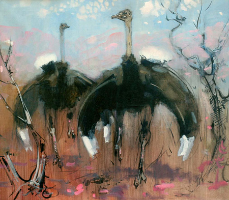"From the Series ""National Parks of the Republic of South Africa"". Ostriches."